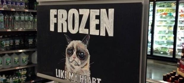 a grumpy cat signs