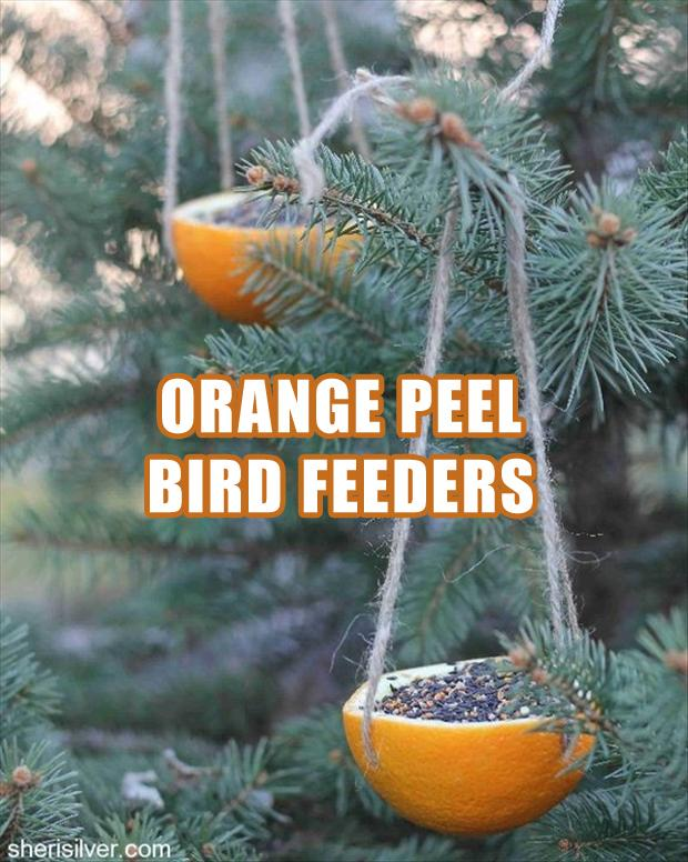 a how to make a bird feeder, fun craft ideas