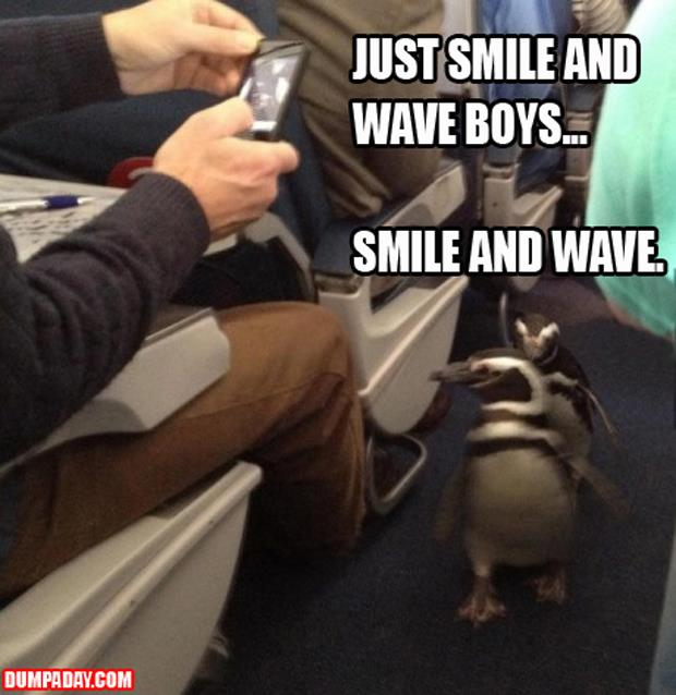 a just smile and wave boys, smile and wave