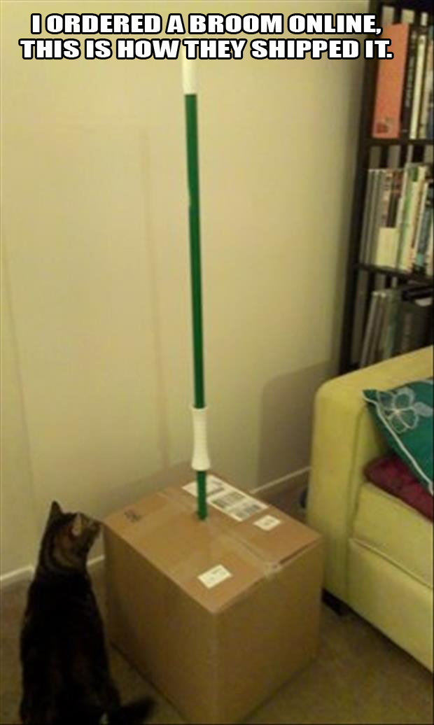 a my friend ordered a broom online, this is how they shipped it