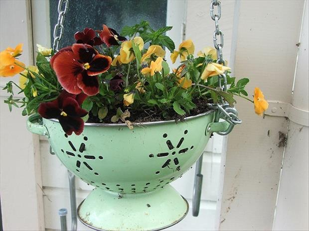 a strainer used as a flower pot recycled