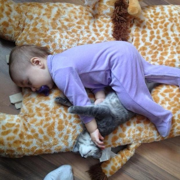 baby and kitten sleeping