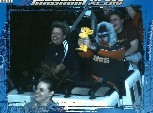 best roller coaster pictures