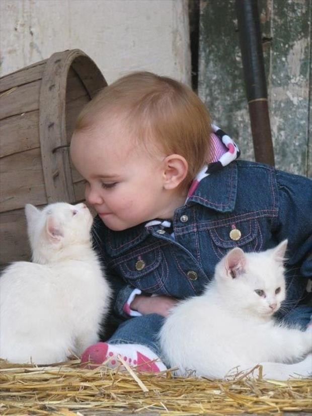cute baby kissing a kitten