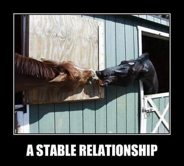 demotivational posters a stable relationship