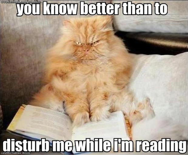 do not disturb me while I'm reading