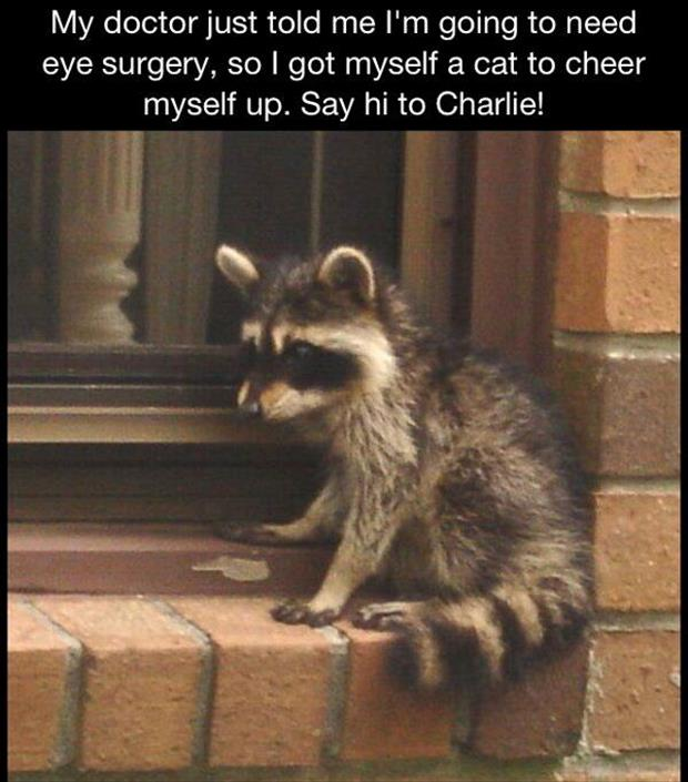eye doctor funny pictures