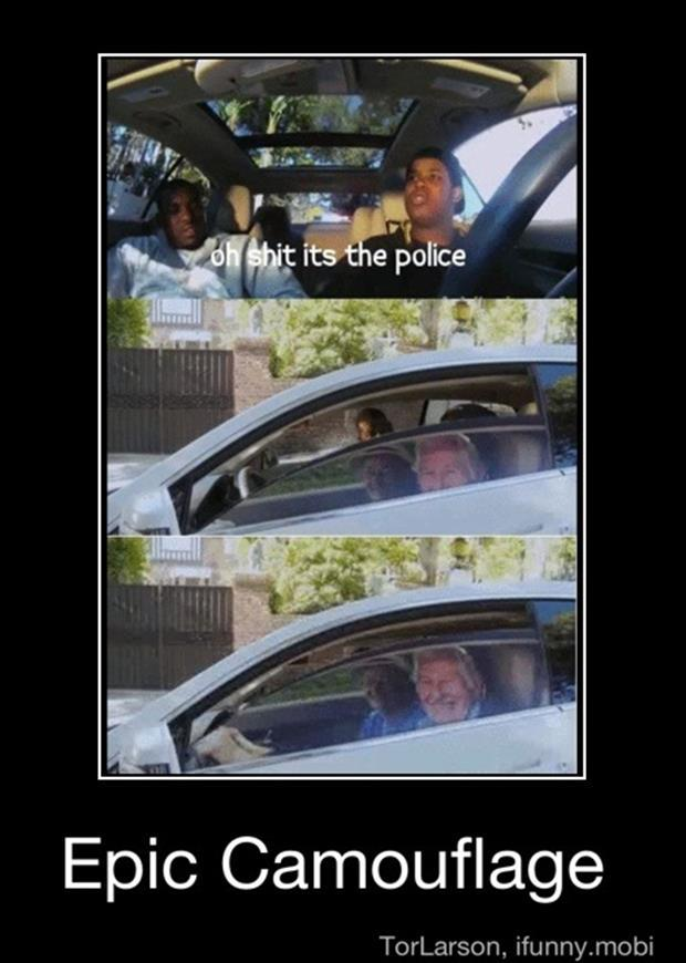funny driving pictures