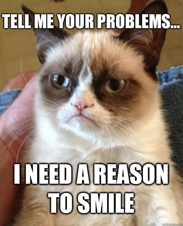 funny grumpy cat wants to know your problems