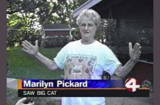 funny news captions (6)
