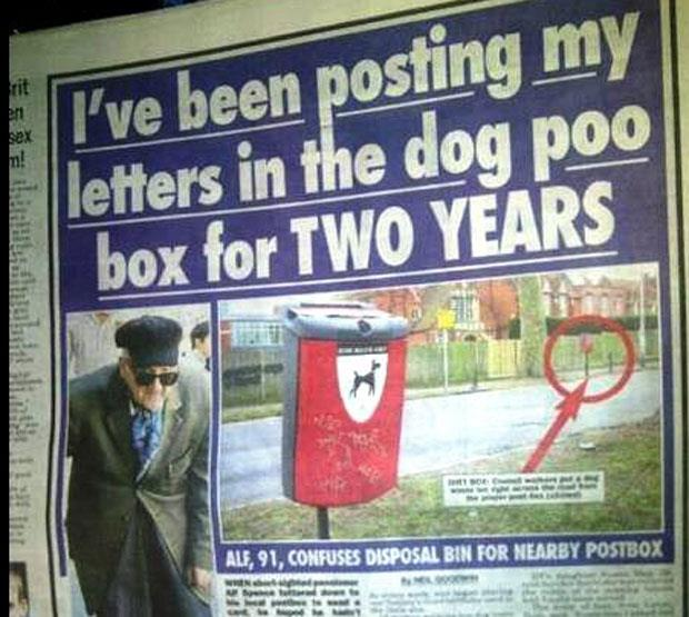 funny news headlines (19)