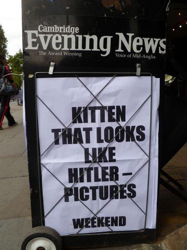 funny news headlines (9)