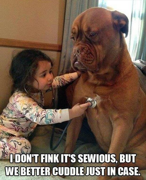 funny pictures dog playing with little girl