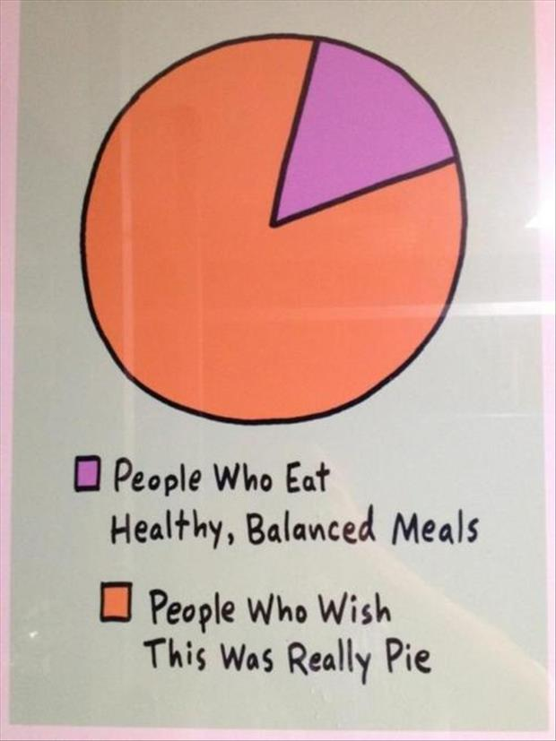 Funny Pie Charts Dump A Day