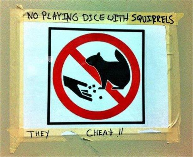 funny signs no playing with squirrels