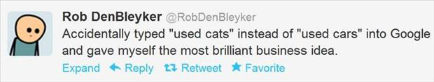 funny twitter quotes about used cats