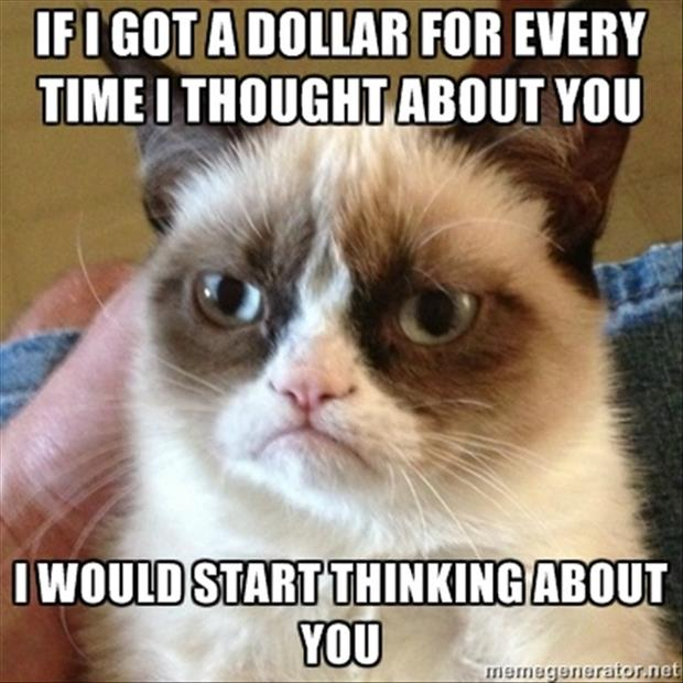 grumpy cat thoughts