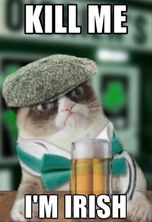 grumpy mctard irish cat