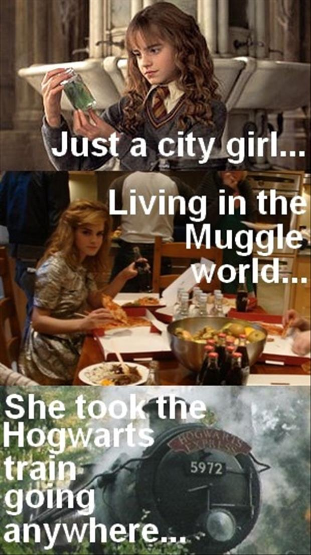 Harry Potter Made Into A Song Funny Pictures Dump Day