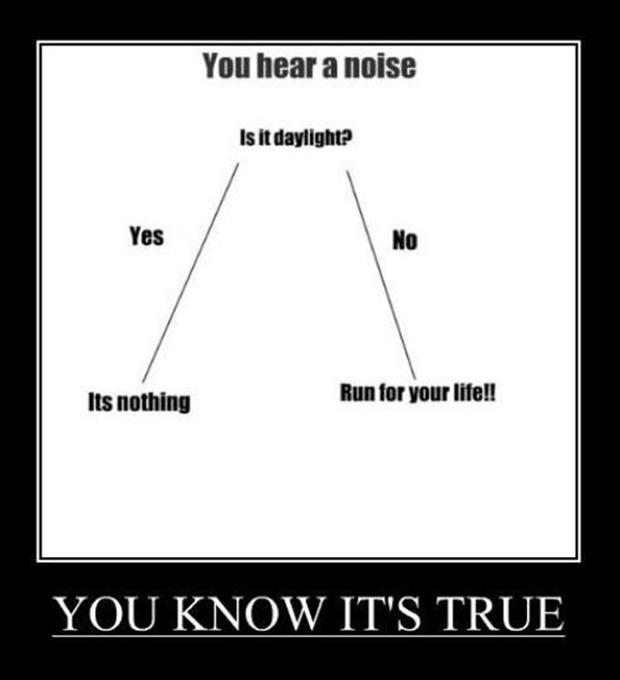 hear a noise demotivational posters