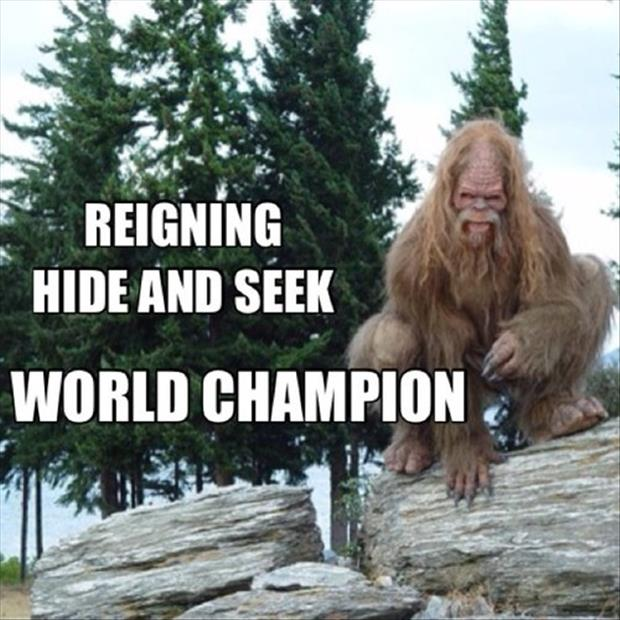 hide and go seek champion