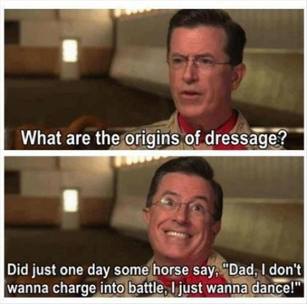 horses want to dance
