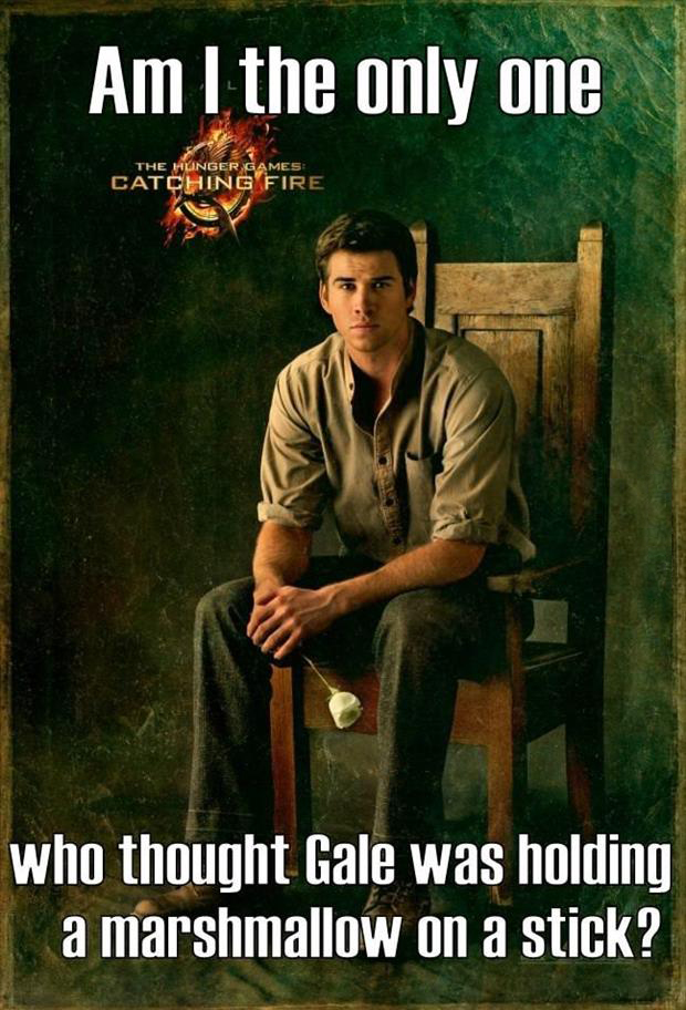 hunger games gale poster