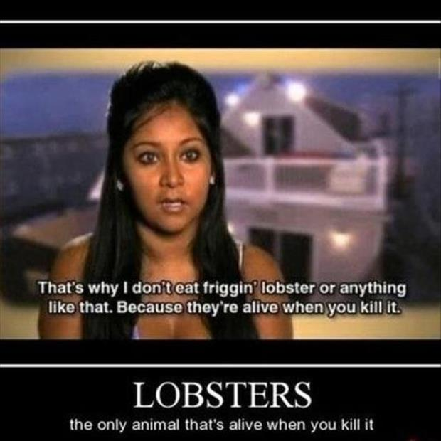 lobster demotivational posters