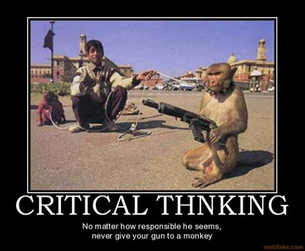 monkey with a gun demotivational posters