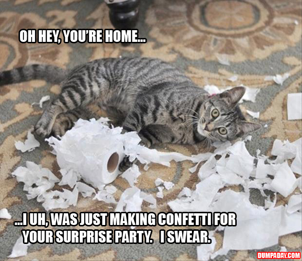 oh hi, i mean thank god you're home, i uh, am making confetti for your surprise party