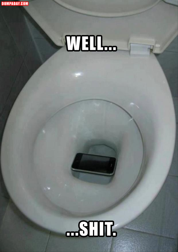 phone in the toilet