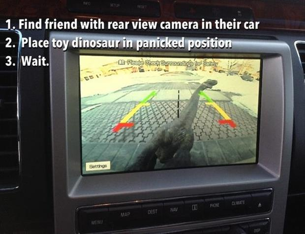 rear view camera on car funny pictures