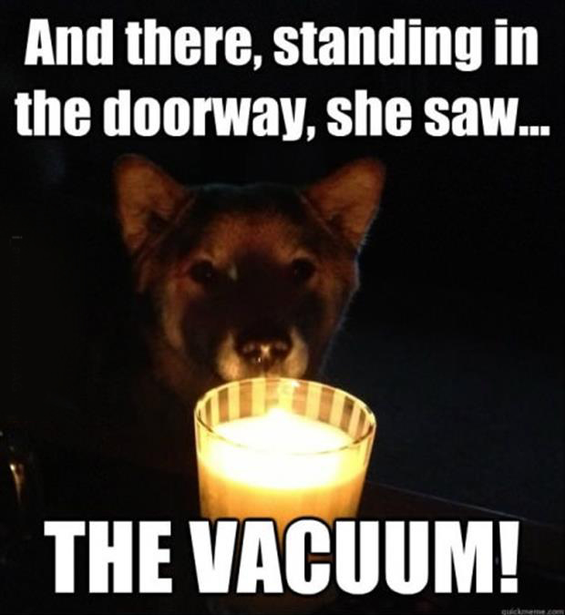 scary stories told by dog