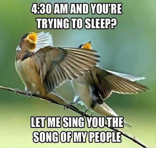 sing the song of my people