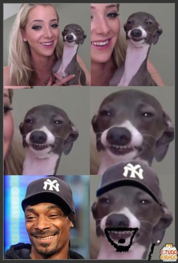 snoop dog funny pictures