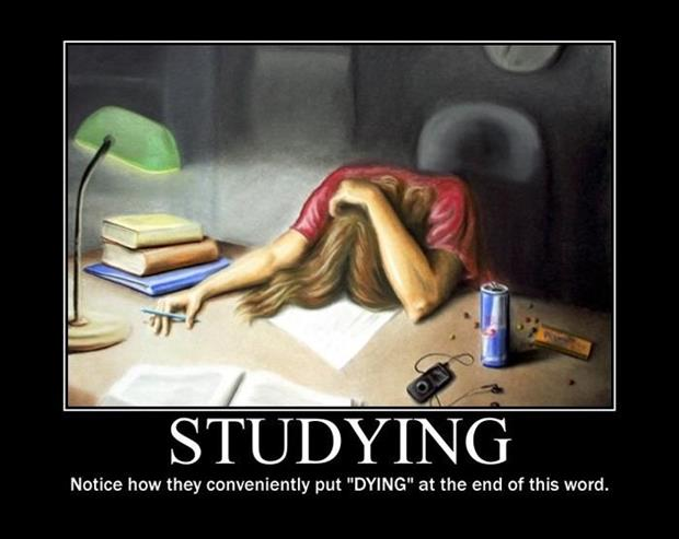studying demotivational posters