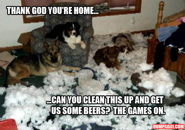 thank god you're home now clean this up we're busy