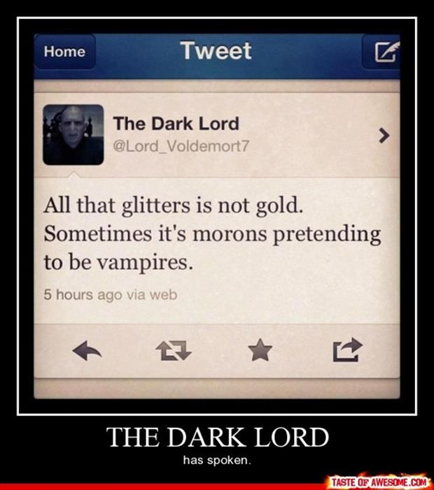 the dark lord demotivational posters
