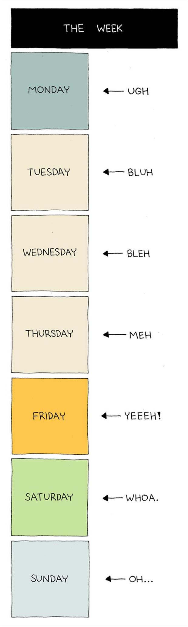 the days of the week funny pictures