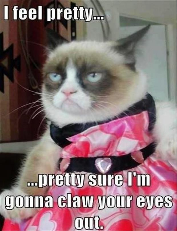 the grumpy cat is dressed up pretty