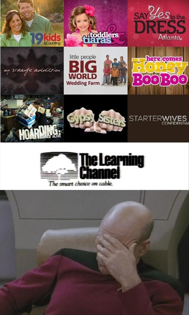 the learning channel tv shows facepalm