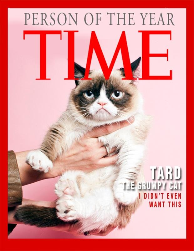 time magazine person of the year grumpy cat