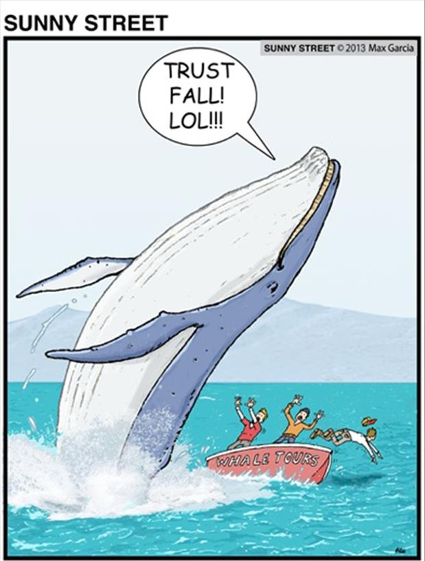 trust fall whales