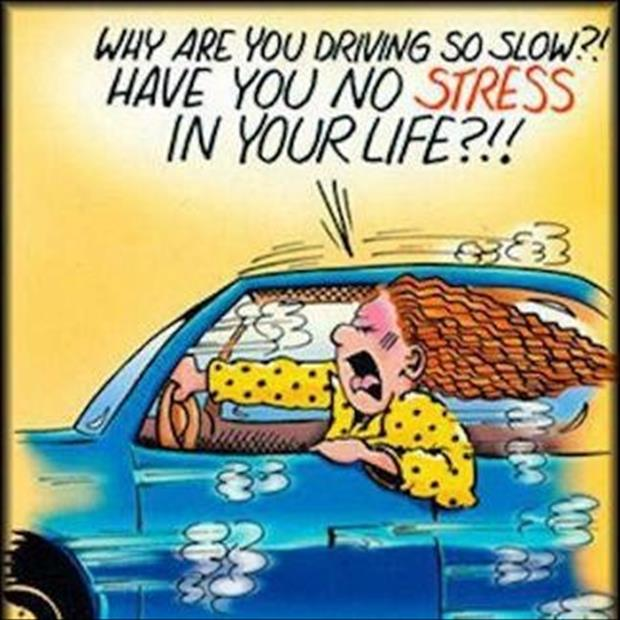 why are you driving so slow have you no stress in your life funny comics