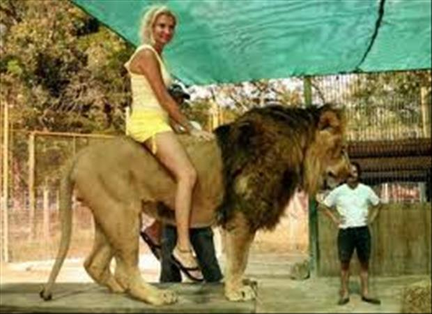 woman sitting on a lion