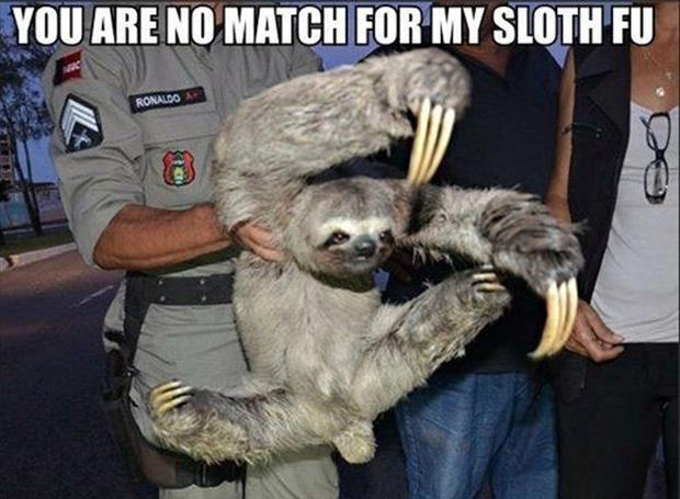 you are no match for sloth fighting