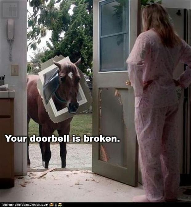 your doorbell is broken