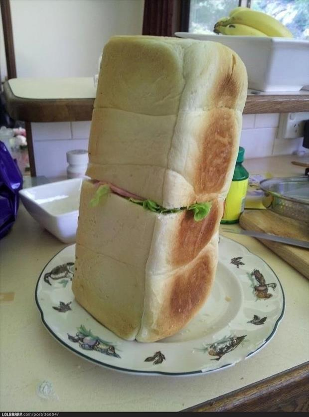 you're doing it wrong sandwhiches