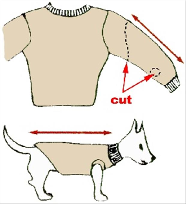 DIY Fun Crafts- Recycle Old Sweater's for your dog