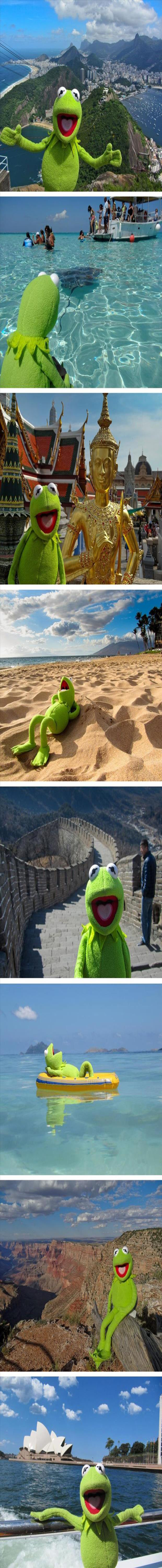 a day in the life of kermit the frog